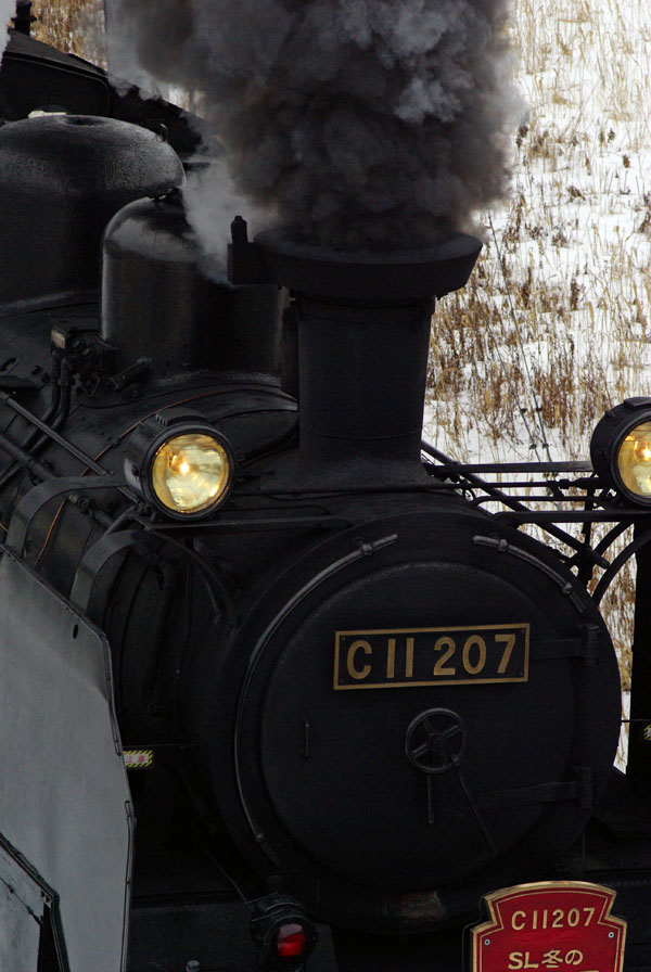 215kemika5