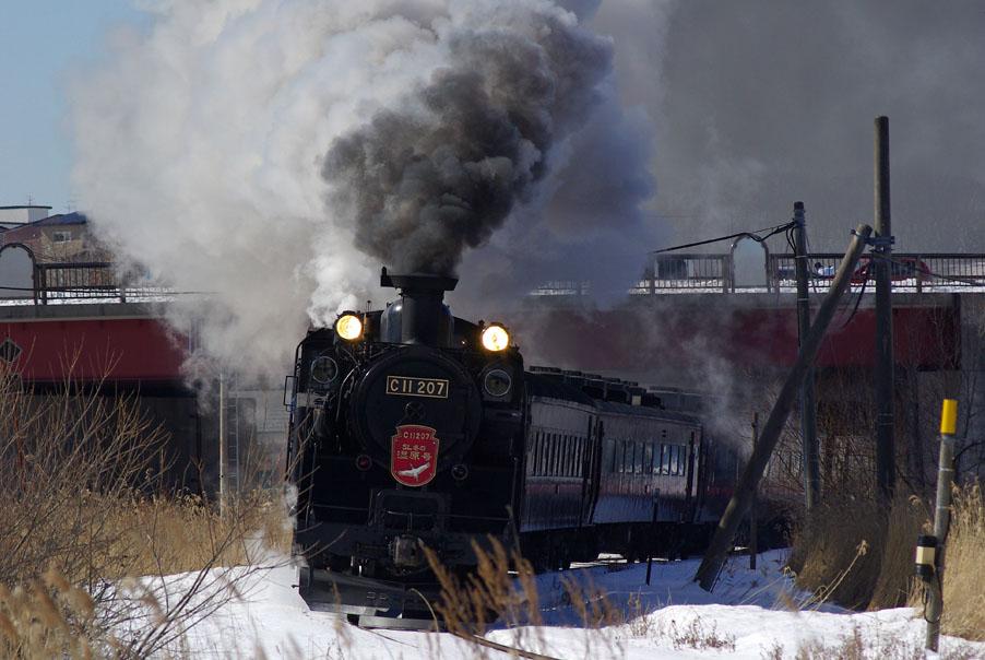 225bokari1